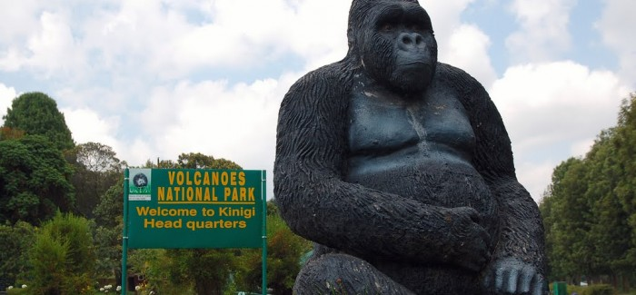 Welcome-to-Volcanoes-National-Park-Rwanda-700x325