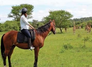 Horse Back Safaris in Uganda
